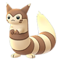 162 Furret Pokemon Go
