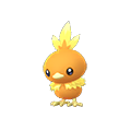 255 Torchic Pokemon Go