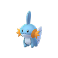 258 Mudkip Pokemon Go
