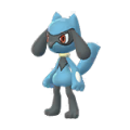 447 Riolu Pokemon Go