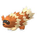 263 Zigzagoon Shiny Pokemon Go