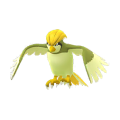 017 Pidgeotto Shiny Pokemon Go