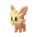 506 Lillipup Pokemon Go