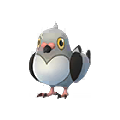 519 Pidove Pokemon Go