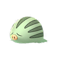 220 Swinub Shiny Pokemon Go