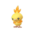 255 Torchic Shiny Pokemon Go