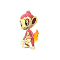 390 Chimchar Shiny Pokemon Go