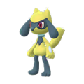 447 Riolu Shiny Pokemon Go