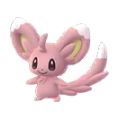 572 Minccino Shiny Pokemon Go